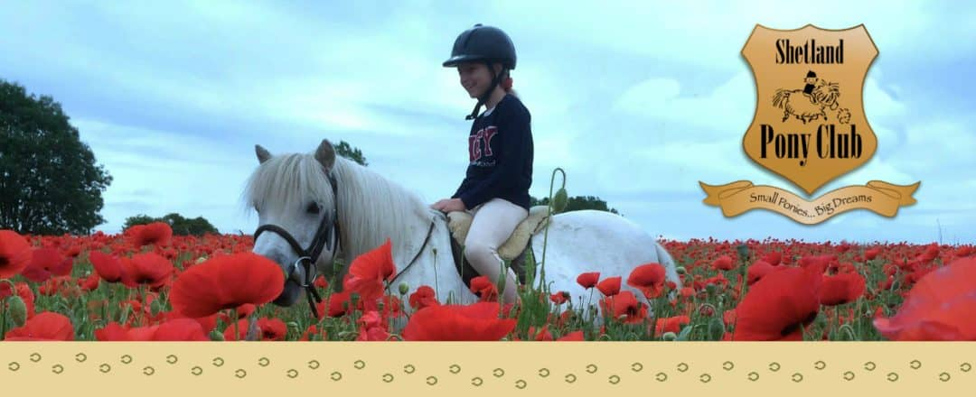 Riding in the poppies at Shetland Pony Club