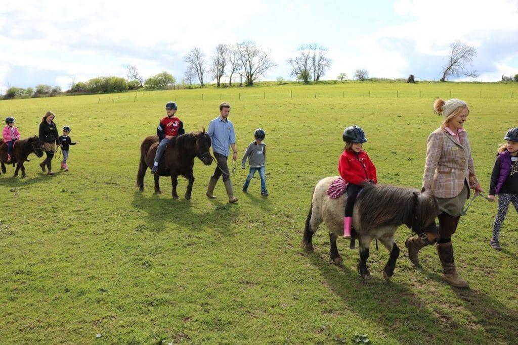 Shetland Pony Party