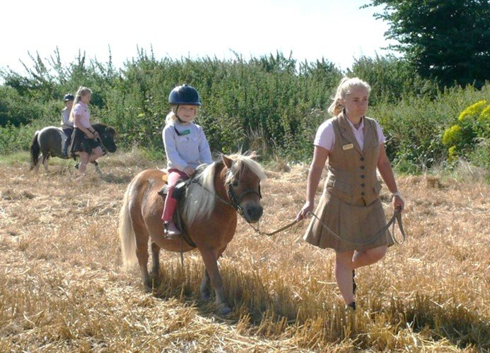 Riding in the corn fields on our summer pony camps at Shetland Pony Club