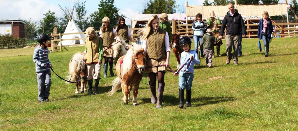 Starting Pony Riding at Shetland Pony Club