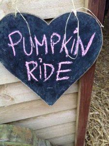 Pumpkin ride at Shetland Pony Club