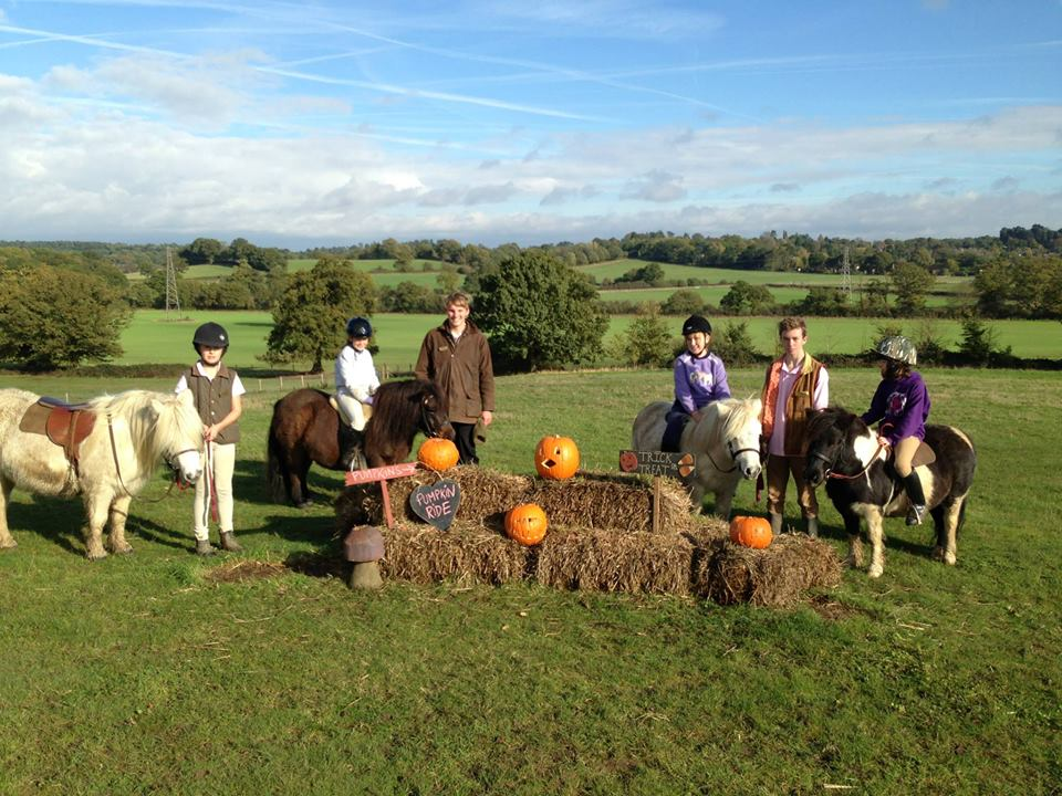 Pumpkins and ponies at the Halloweeen ride