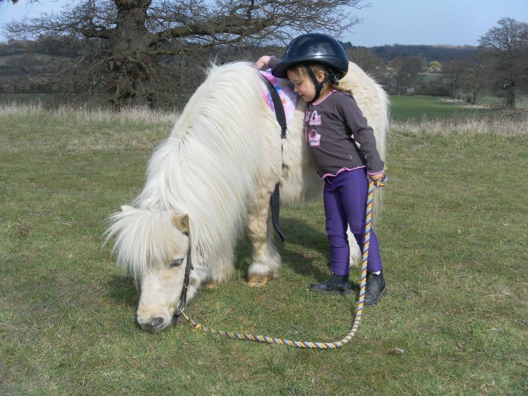 Starter Ride at Shetland Pony Club