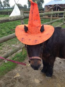 Halloween Pumpkin Ride fun - witches hat on Elgin Sunset