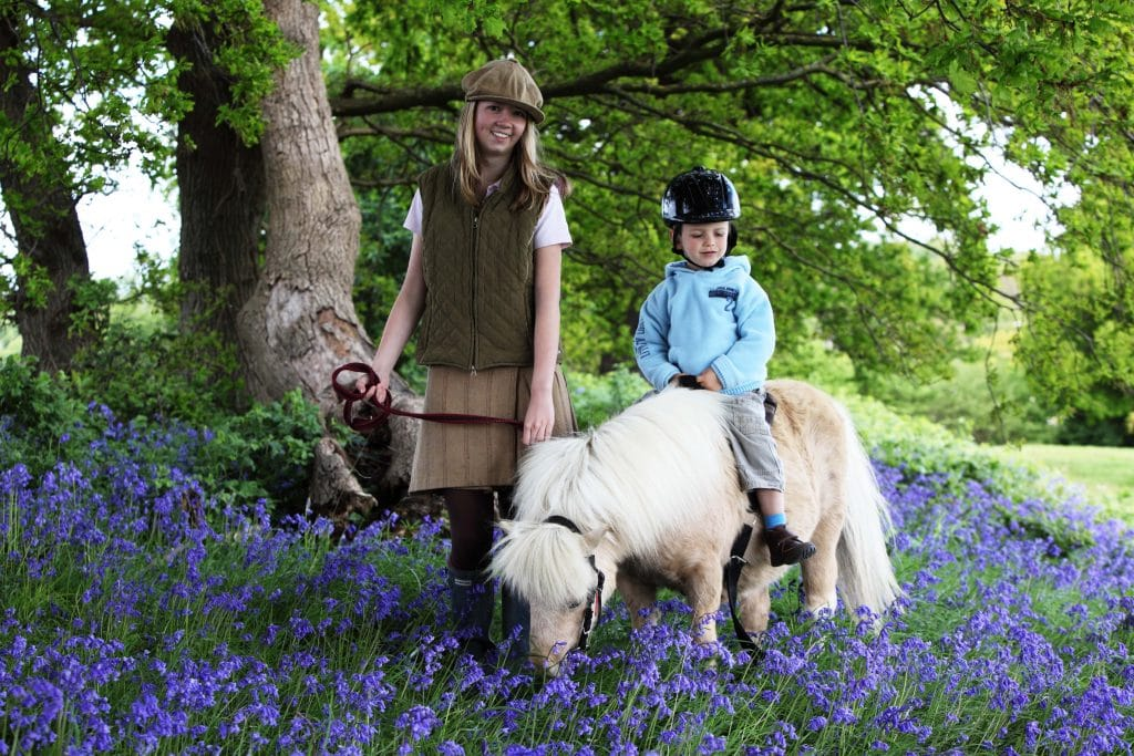 Riding in the Bluebells at Shetland Pony Club
