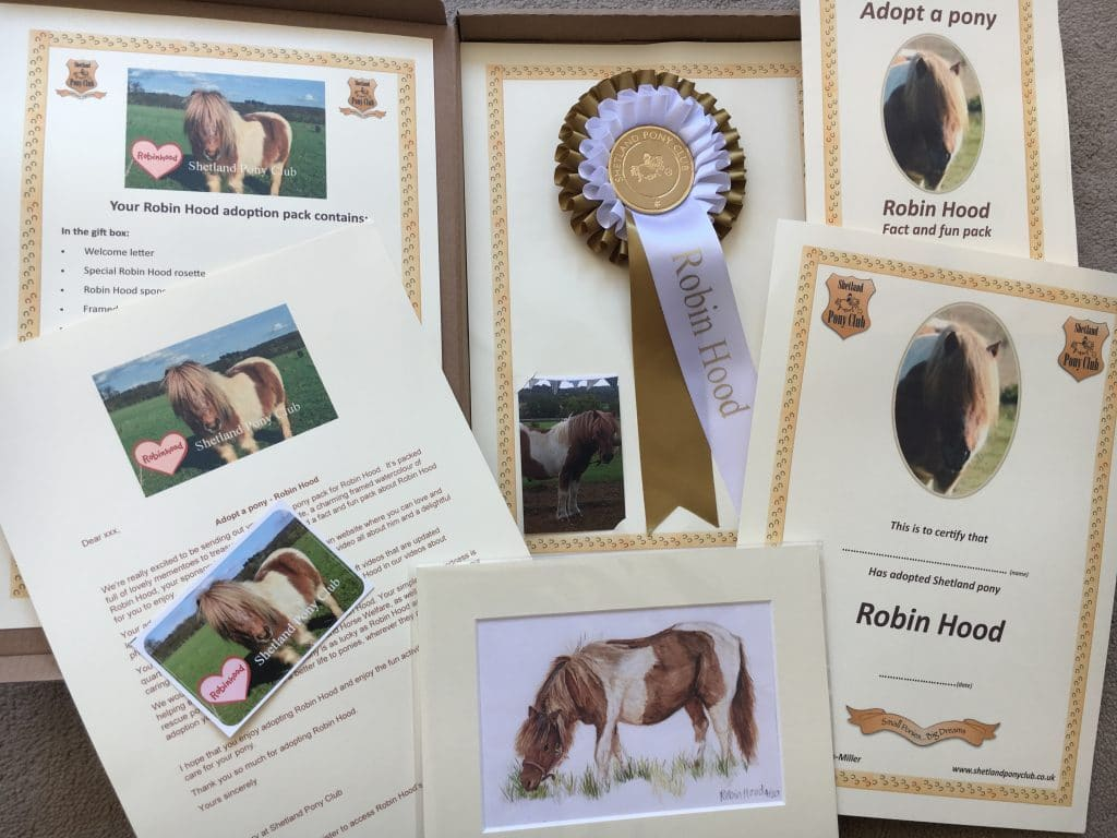Adopt a Pony Pack for Robin Hood