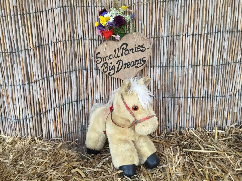 Pony toys at Shetland Pony Club