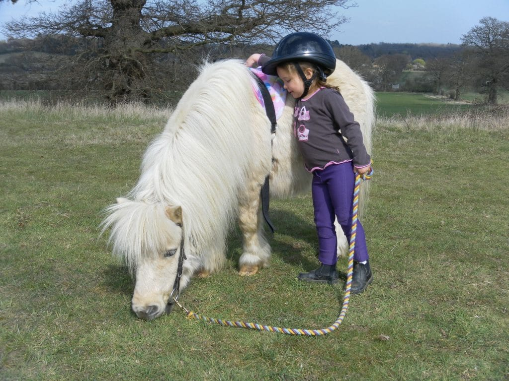 Starting out with ponies at Shetland Pony Club