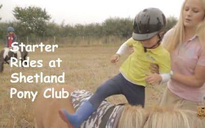 Learn how to ride a Shetland pony