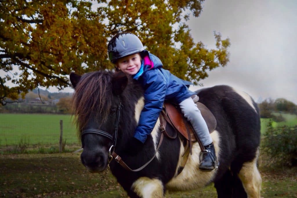 Children love their ponies at Shetland Pony Club