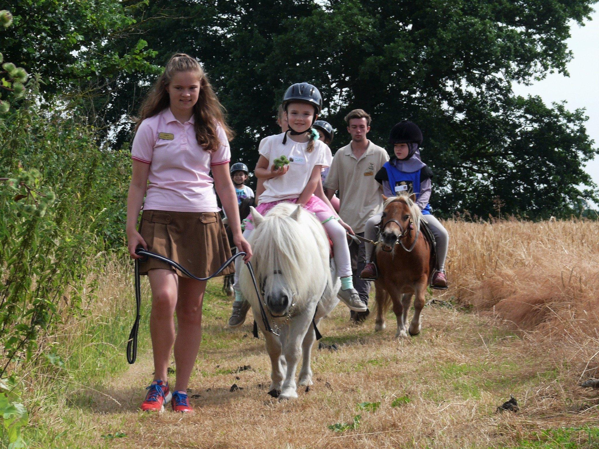 Camp Day at Shetland Pony Club