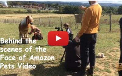 Behind the scenes of the Face of Amazon Pets Video
