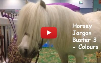 Horsey Jargon Buster 3 – Colours