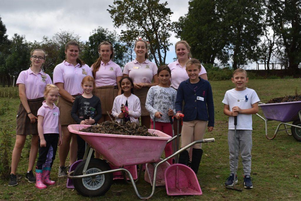 Shetland Pony Club Team