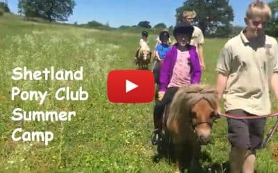 Don't miss out on Shetland Pony Club Summer Camp