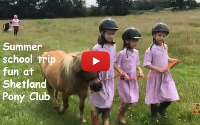 Summer school trip fun at Shetland Pony Club