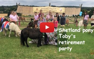 Toby the Shetland Pony's Retirement Party