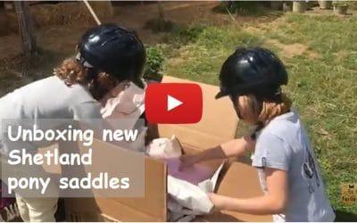 Unboxing new Shetland pony saddles
