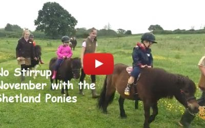 No Stirrup November with the Shetland ponies
