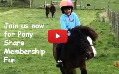 Join us now for Pony Share Membership Fun