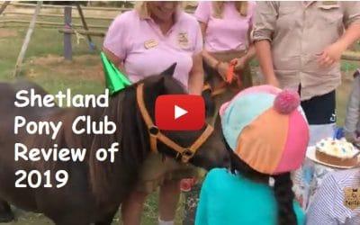 Shetland Pony Club Review of 2019
