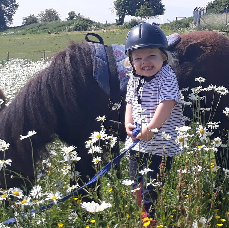 Book now to make pony dreams come true at Shetland Pony Club