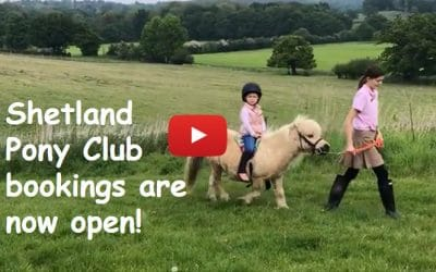 Shetland Pony Club bookings are now open!