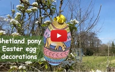 Pony update & pony Easter egg decorations