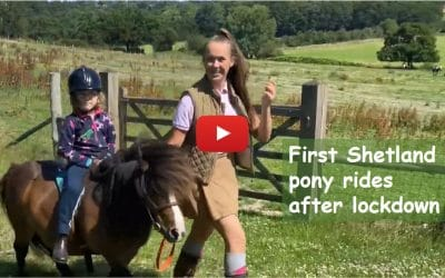 First Shetland pony rides after lockdown