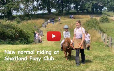 New normal riding at Shetland Pony Club