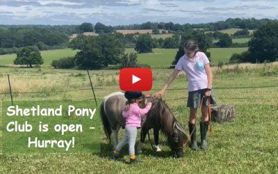 Shetland Pony Club is open, Hurray!